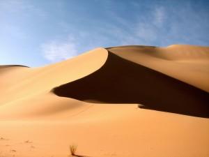 wallpaper-paysage-dune-sable-nature
